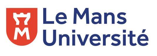 logo_lmu.jpg